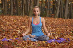 Young woman meditating in autumn forest. Young blond woman in blue t-shirt practicing yoga sitting on the ground in the half-lotus position meditating with Stock Images