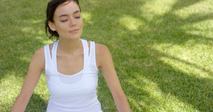 Young woman meditating in nature Stock Images