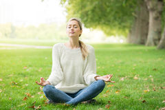 Young woman meditating and Yoga in a park Royalty Free Stock Image