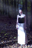 Young woman in misterious woods. Ghostly young woman in misterious woods Royalty Free Stock Photos