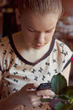 Young woman with mobile phone in cafe Royalty Free Stock Photos