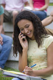Young woman on mobile phone, smiling Stock Images