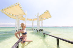 Young woman model posing bikini inside sea. Royalty Free Stock Images