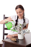Young woman with money tree. Royalty Free Stock Images