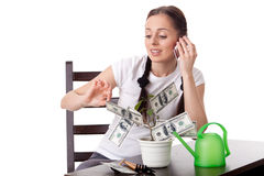Young woman with money tree. Stock Photography