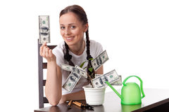 Young woman with money tree. Royalty Free Stock Photography