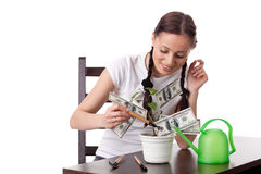 Young woman with money tree. Stock Photo