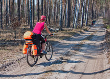 Young woman mountain bike ride on  forest trail. Stock Photo