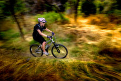 Young Woman Mountain Biking Stock Photos