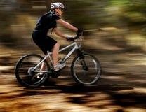 Young Woman Mountain Biking Stock Images