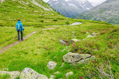Young woman on a mountain trail, Alps, Austria Stock Images
