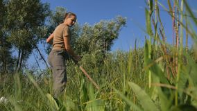Young woman mowing the green grass with the scythe on the summer field by the river. Beautiful landscape. Work in the. Field. Real rural woman stock video