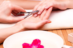 The young woman in nail treatment medical concept Stock Image