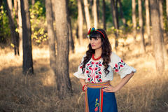 Young woman in national ukrainian clothes on the Stock Photography