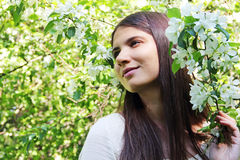 Young woman near apple tree Stock Images
