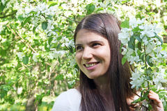 Young woman near apple tree Stock Image