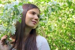Young woman near apple tree Stock Photos