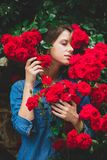Young woman near the bush of red roses in a garden royalty free stock images
