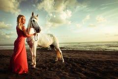 Young woman near the horse Stock Photos
