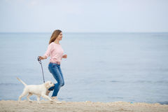 A young woman near the sea with a puppy Retriever Stock Image