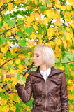 Young woman near the tree. Young blonde woman in the park Stock Image