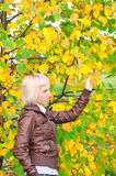 Young woman near the tree. Young blonde woman in the park Royalty Free Stock Image