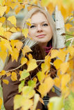 Young woman near the tree. With yellow leaves Royalty Free Stock Photo
