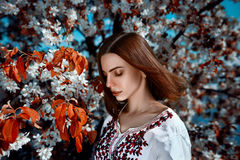Young  woman near the tree with red leafs. Beautiful young brunette woman standing near the tree with red leafs on a warm summer day Royalty Free Stock Photos