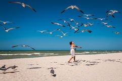Woman feeding seagulls on a beach. Young woman in a nice dress feeding a flock of seagulls on a white sand beach Royalty Free Stock Photography