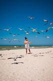 A woman teasing a flock of seagulls on a beach. Young woman in a nice dress feeding a flock of seagulls on a white sand beach Royalty Free Stock Photo