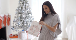 Young woman opening a Christmas gift bag Stock Photos