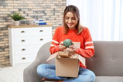 Young woman opening parcel on sofa stock image