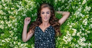 Young woman lying down in white lavender flowers. Young woman outdoors lying down in white lavender flowers. Female model posing in natural white field. Girl in royalty free stock images