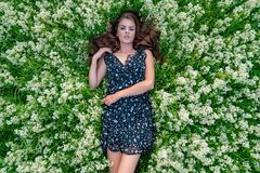 Young woman lying down in white lavender flowers. Young woman outdoors lying down in white lavender flowers. Female model posing in natural white field. Girl in royalty free stock image