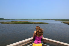 Young woman overlooking marshland Stock Photography