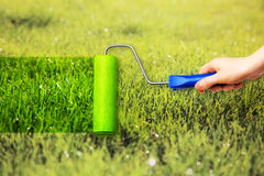Young woman painting on grass Royalty Free Stock Photos