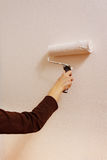 Young woman painting her home wall. Handmade Royalty Free Stock Images