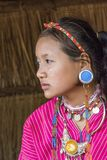 Palong Hill Tribe Woman, Northern Thailand. Young Woman from the Palong tribe with traditional Costume, Chiang Rai, Thailand, Asia stock images