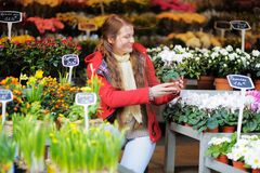 Young woman at Parisian flowers market Royalty Free Stock Photography