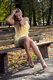 Young woman in the park. Beautiful young woman in the park enjoying a beautiful autumn day Stock Photos