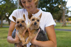 Young woman in park holding dogs to chest, close-up Royalty Free Stock Image
