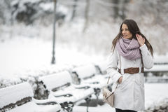 Young woman in the park at winter Stock Photography