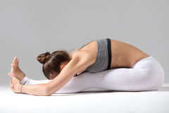 Young woman in paschimottanasana pose, grey studio background Royalty Free Stock Images
