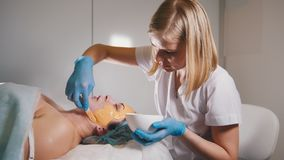 Young woman passes treatment fruit mask facial at the beauty salon. Young women passes treatment fruit mask facial at the beauty salon, close up Royalty Free Stock Images