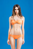 Young woman with a perfect body in a swimsuit Stock Images