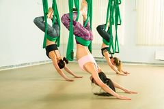 Young woman performing aerial yoga exercise Stock Images