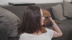 Young woman pets her dog while relaxing in the living room royalty free stock images