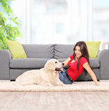 Young woman petting a dog at home. Young woman petting a dog seated on carpet next to a modern gray sofa at home shot with tilt and shift lens Stock Image