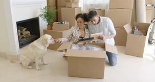 Young woman petting her pet dog Stock Photos