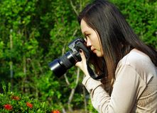 Young woman photographer Royalty Free Stock Image